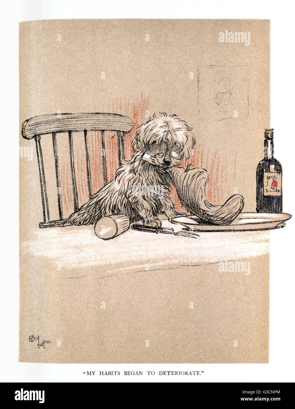 Illustration by Cecil Aldin, The Snob.  Fluffikins bites one person too many, and  is given to a family in trade - Stock Image