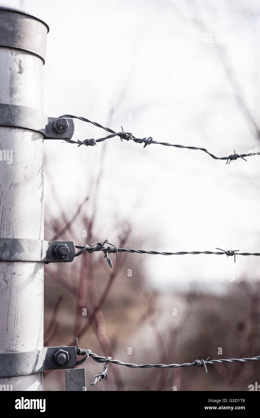 Band Barbed Wire Stock Photos & Band Barbed Wire Stock Images - Alamy