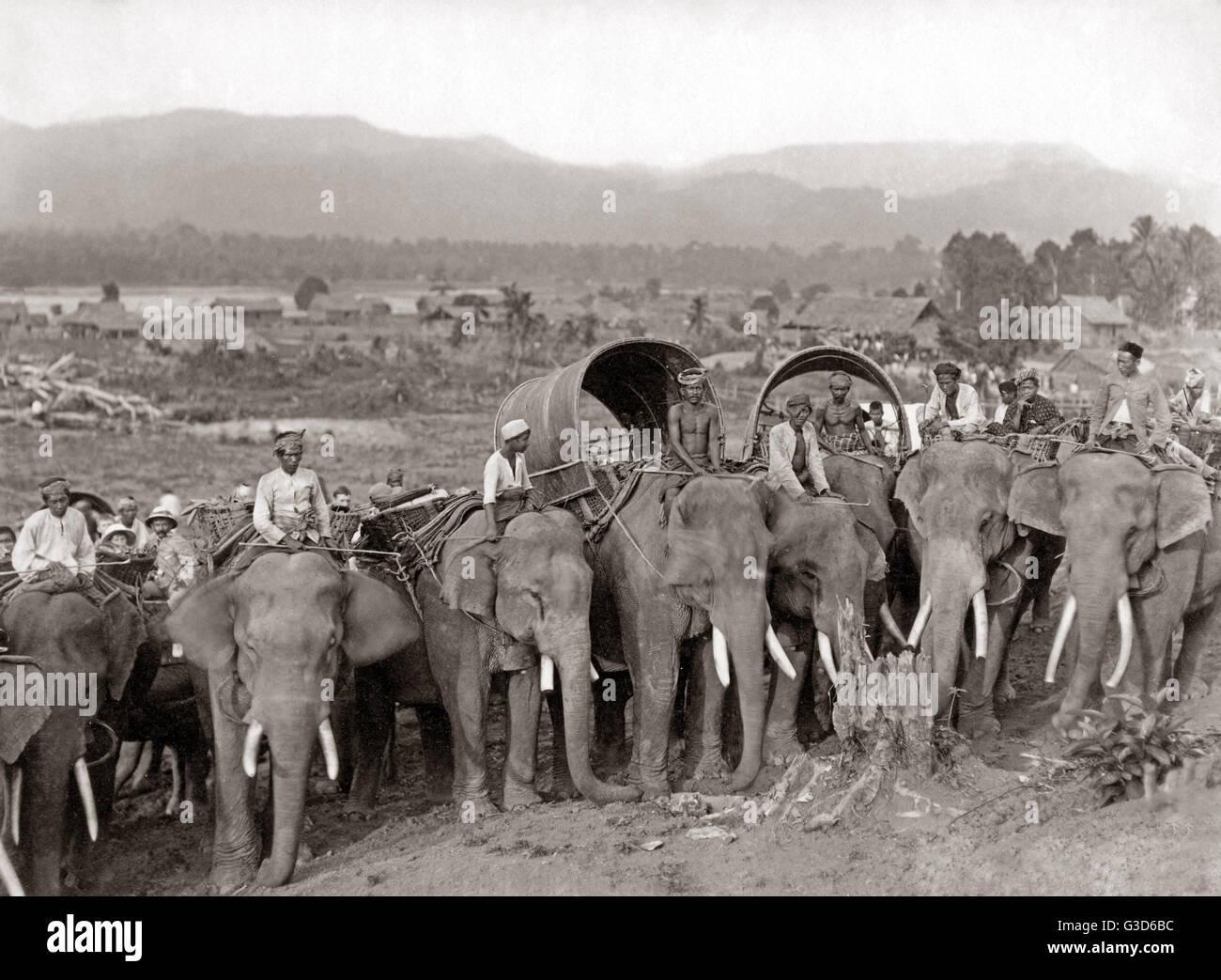 Working elephants, probably Burma, circa 1890.     Date: circa 1890 Stock Photo