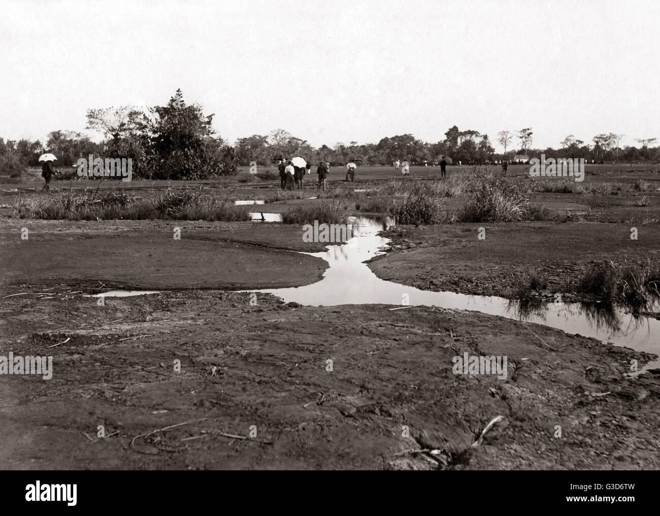 The pitch lake, Trinidad, West Indies, circa 1900.     Date: circa 1900 - Stock Image