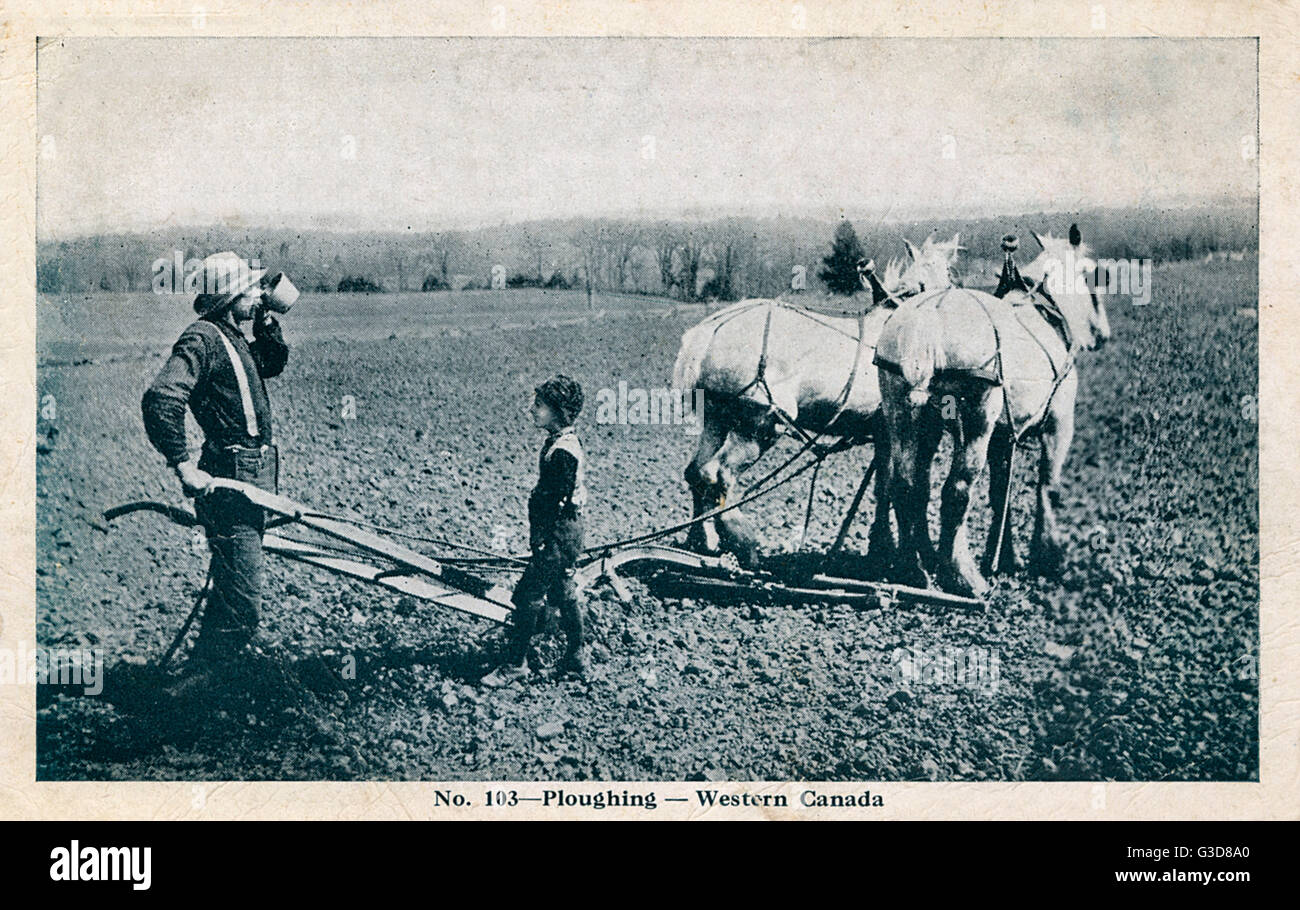 Ploughing in Western Canada - Farmer and son take a break     Date: 1919 - Stock Image