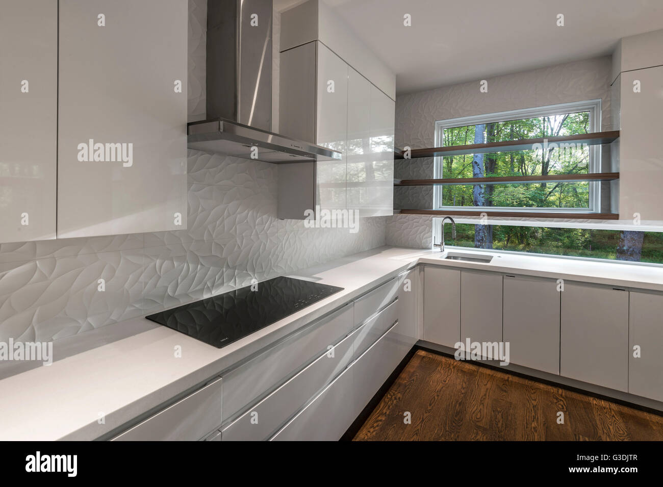 Empty White Modern Kitchen