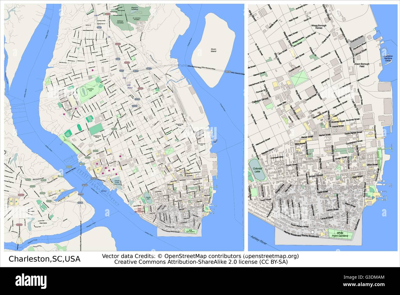 Charleston South Carolina City Map Stock Vector Art Illustration