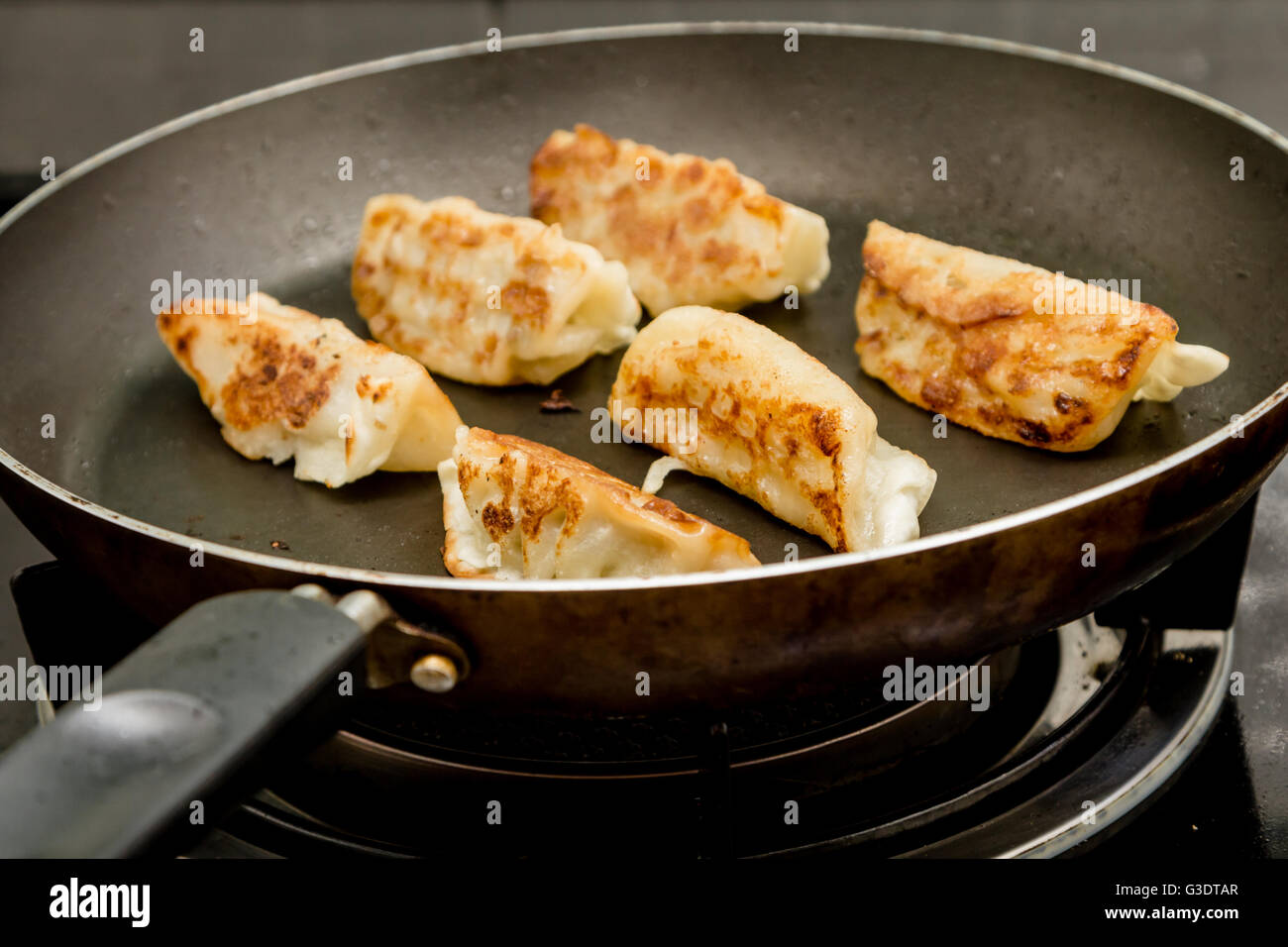 gyoza japanese dumplings in frying pan stock photo 105410671 alamy