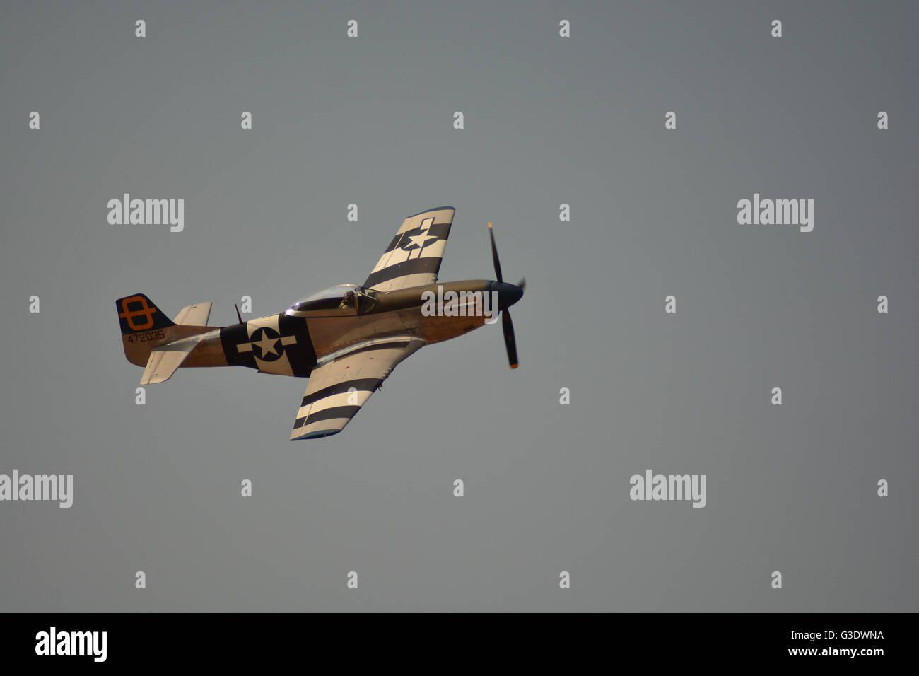 USAF p47 mustang at airshow - Stock Image