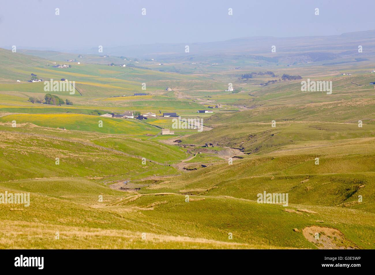 Moorland above Harwood Beck, River Tees, Forest in Teesdale, North Pennines, Durham Dales, County Durham, England, - Stock Image