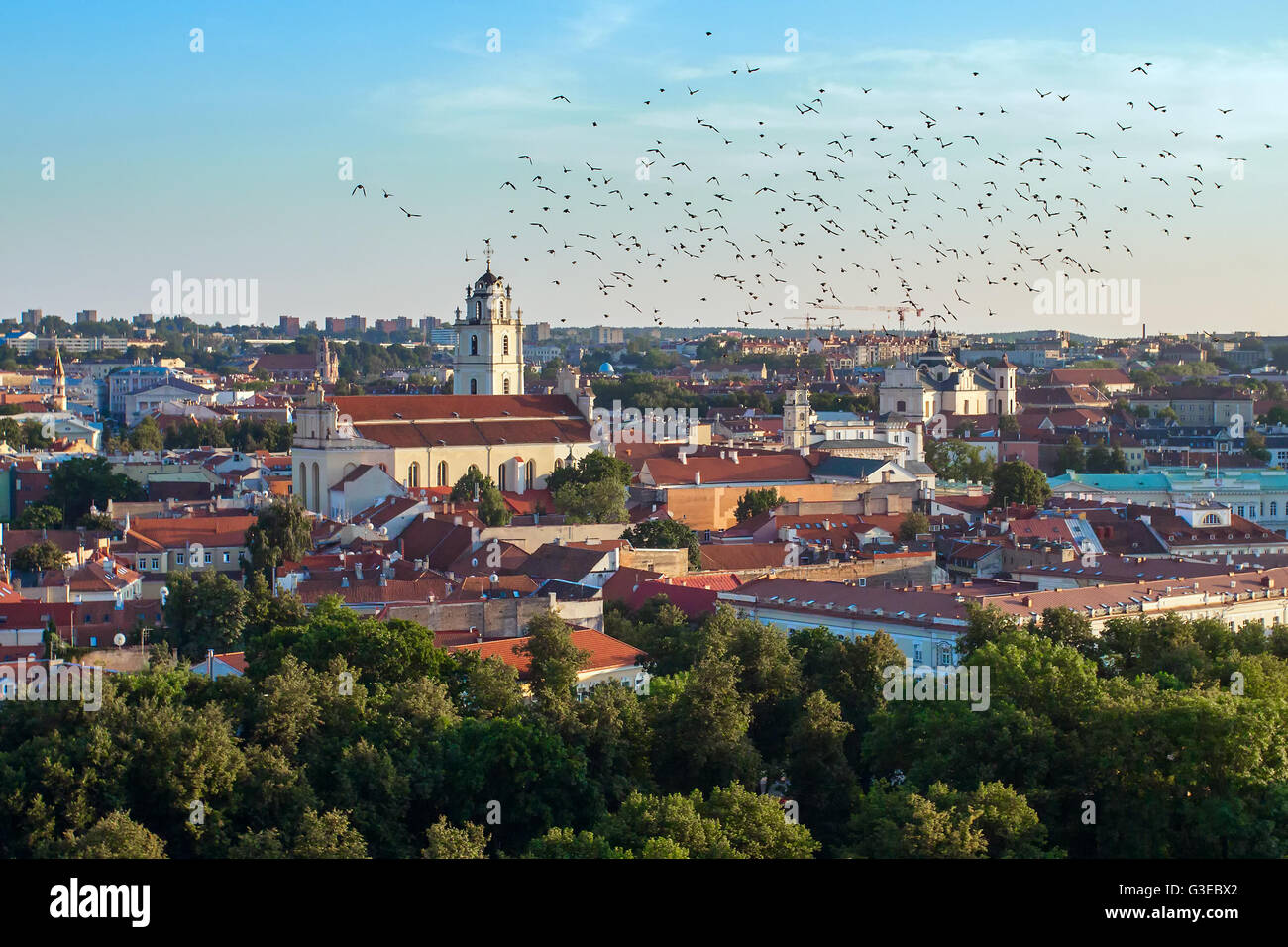Summer in Vilnius, city center downtown view, Lithuania - Stock Image