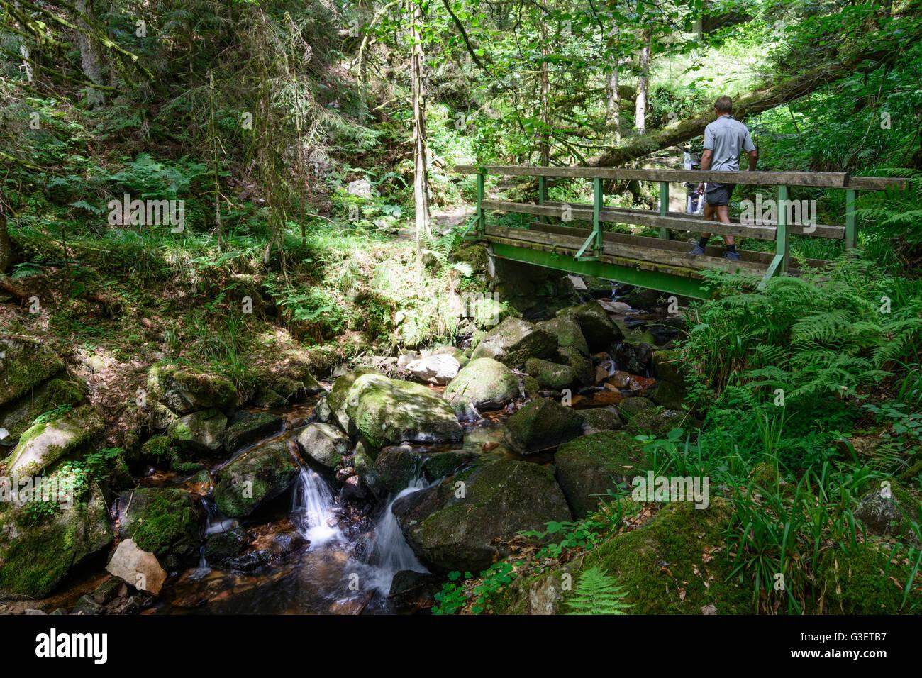 gorge Windberg-Schlucht, hiker, Germany, Baden-Württemberg, Schwarzwald, Black Forest, St. Blasien Stock Photo