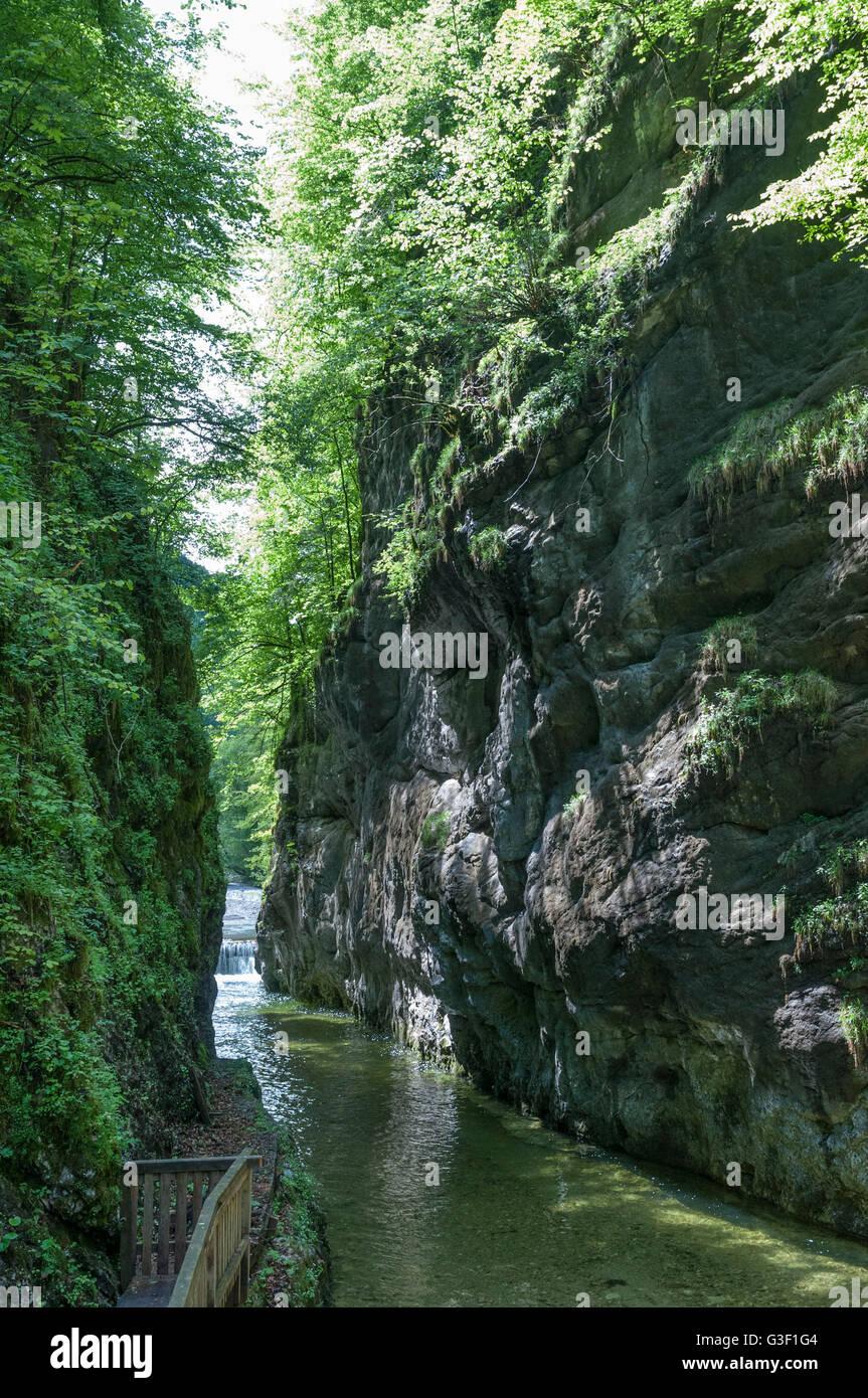Große Klause, gorge, Großer Bach, Kalkalpen National Park, Upper Austria, Austria - Stock Image