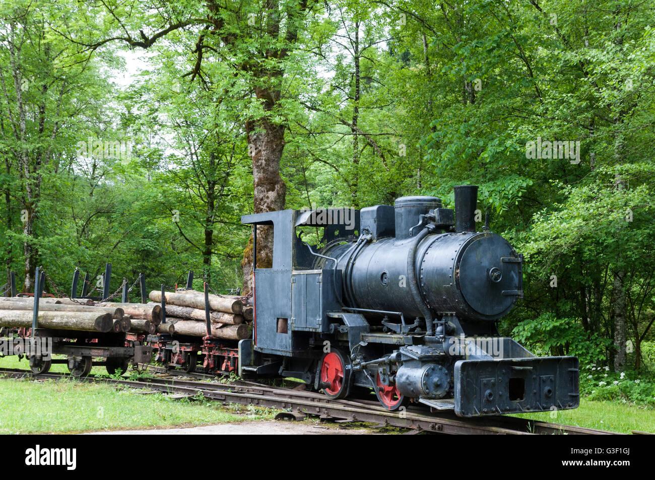 Locomotive, former forest railway, Hintergebirgs cycle track, Kalkalpen National Park, Upper Austria, Austria Stock Photo