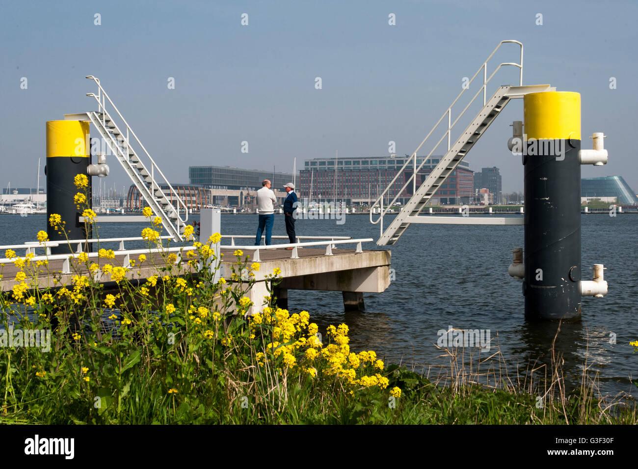 Ij, pier, harbour IJ, Amsterdam-Noord (borough), Amsterdam, Holland, Netherlands - Stock Image