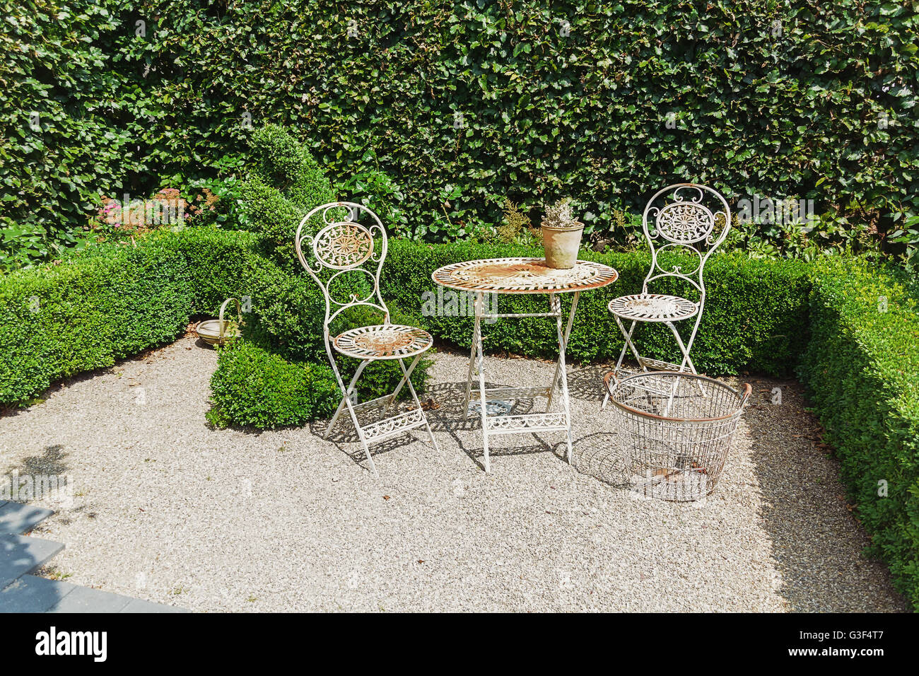 Openwork iron garden furniture to the background of the hedge. - Stock Image