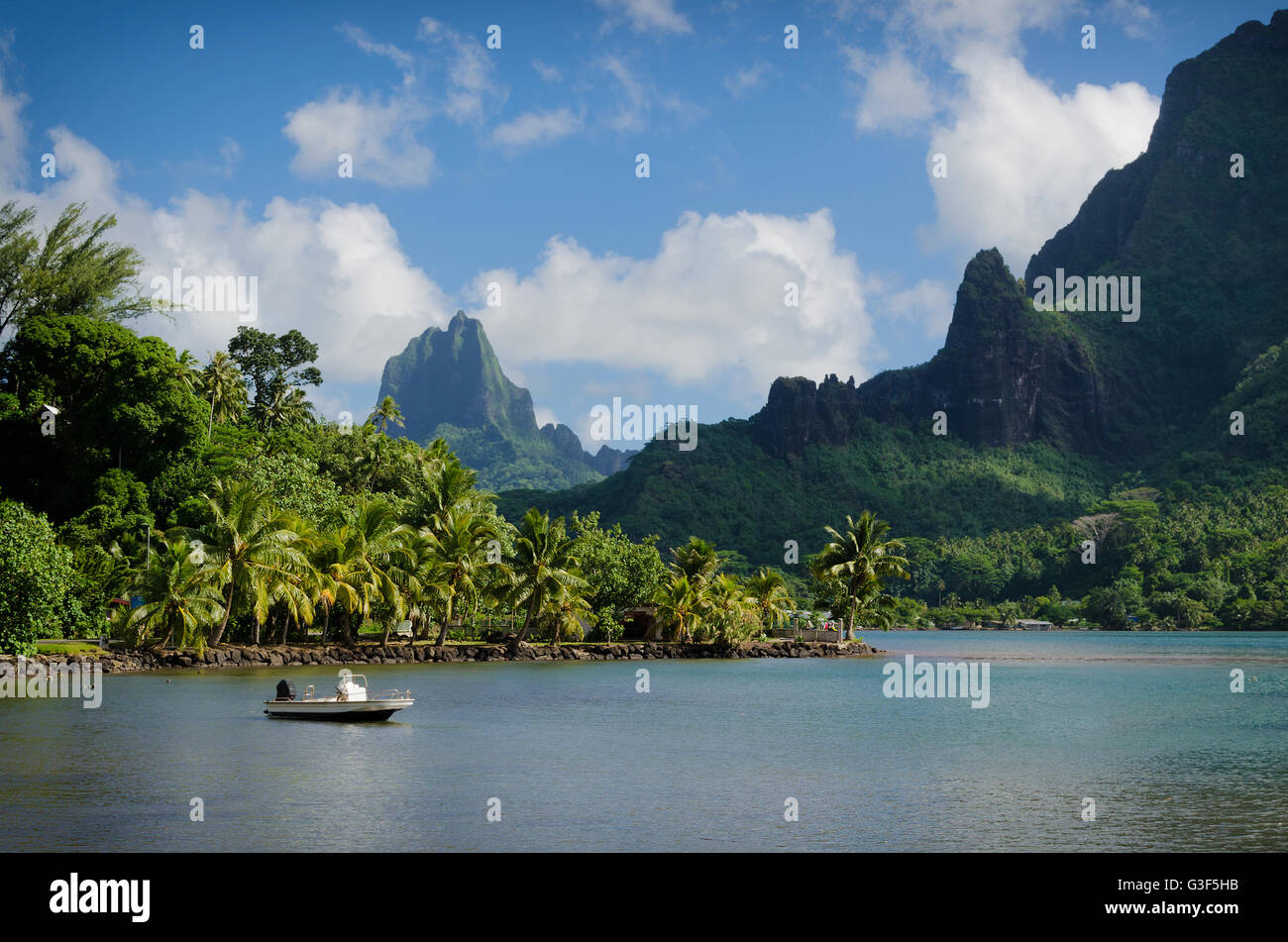 Boat in Cooks Bay with Moua Puta mountain in the background in a  jungle landscape on the tropical island of Moorea, - Stock Image