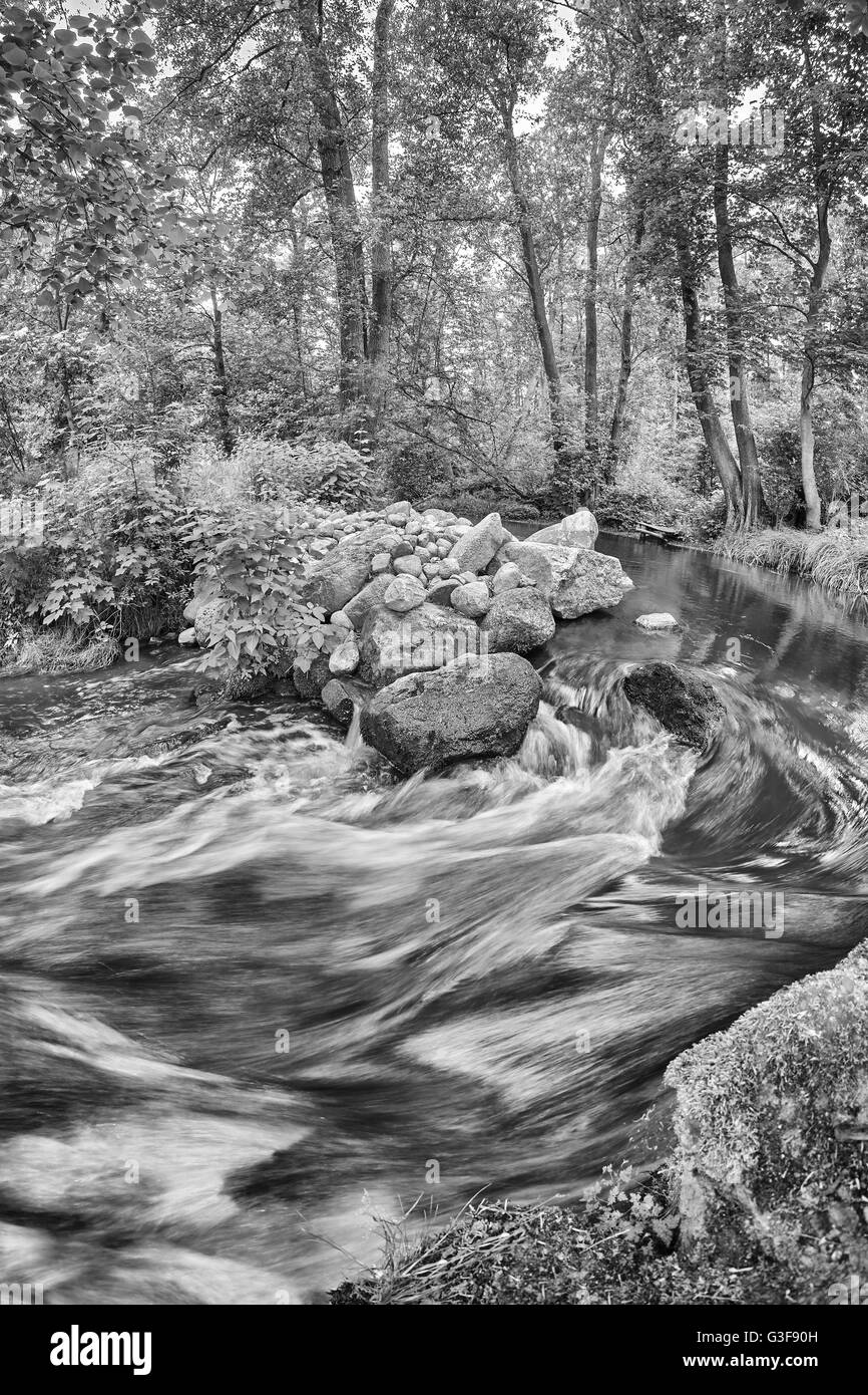 Black and white picture of a river bend in forest, water in motion. - Stock Image