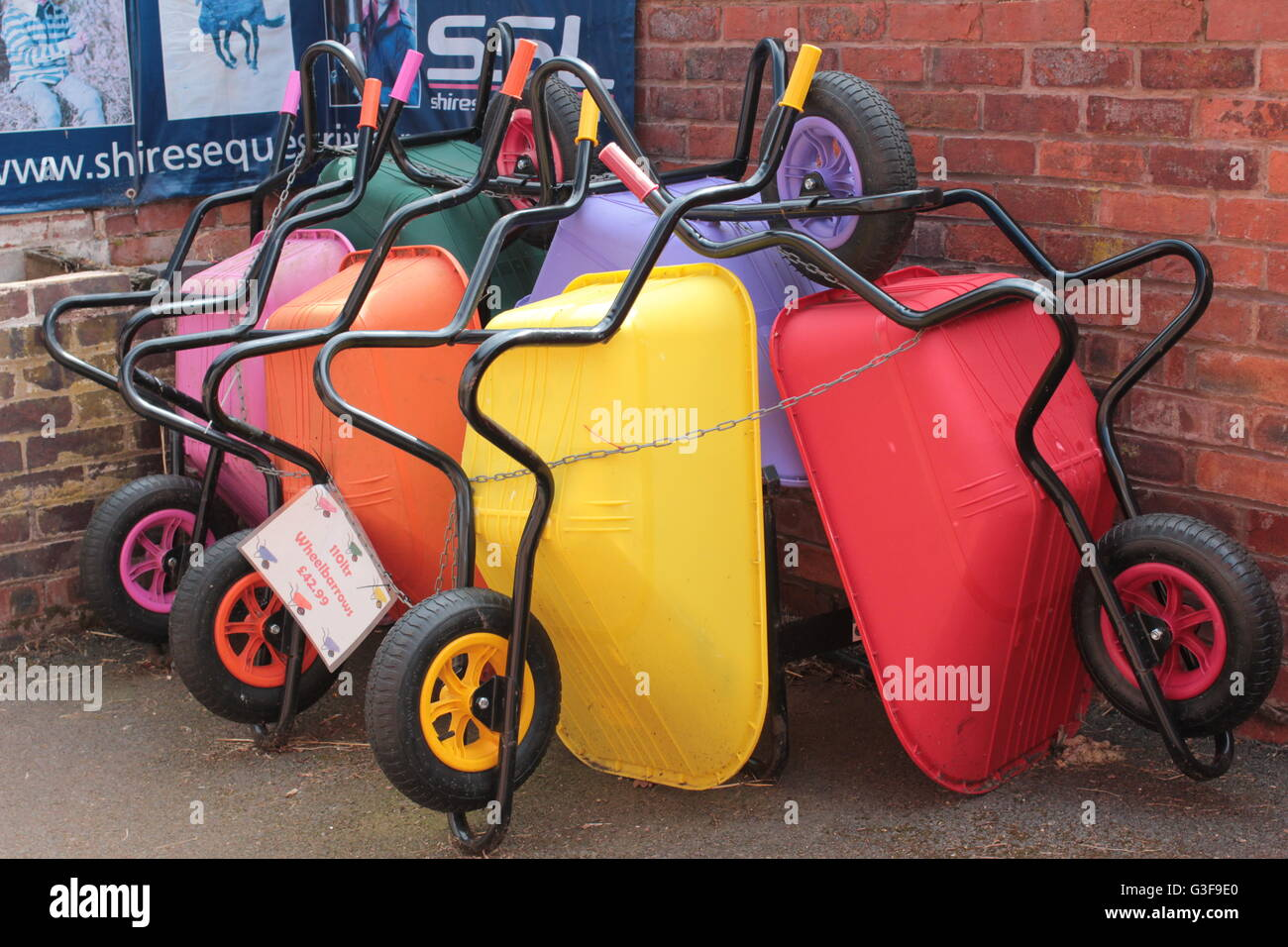 Multi-colored wheelbarrows - Stock Image