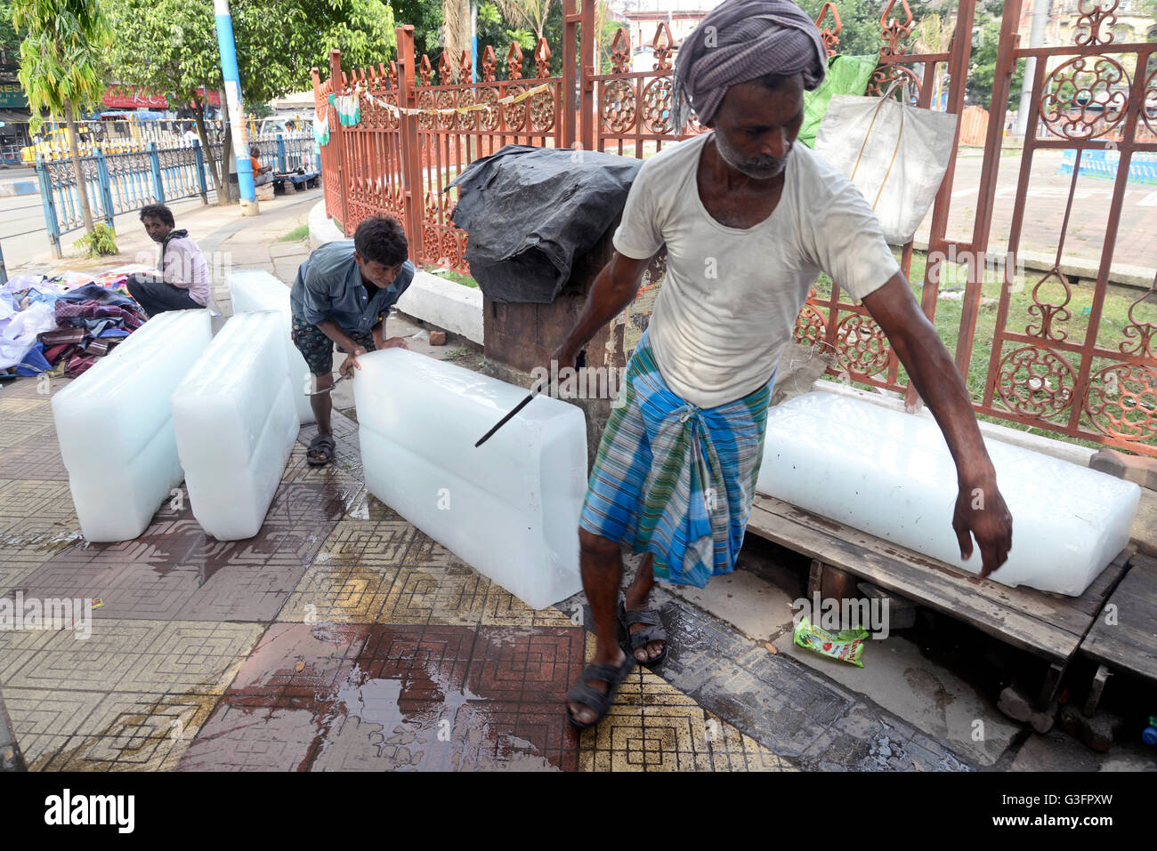 Kolkata, India. 11th June, 2016. Labor bring ice, as demand for ice increase due to heat wave in the region. Heat - Stock Image