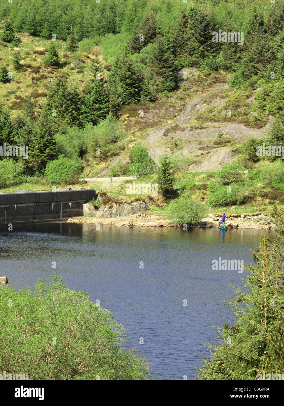 Loch Bradan, Carrick Forest, Galloway Forest National Park, South Ayrshire, Scotland, UK - Stock Image