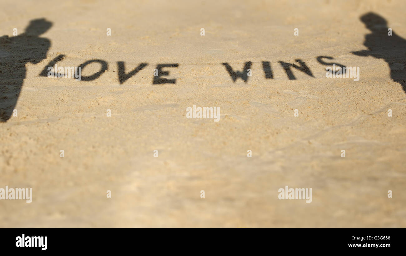 Silhouette shadow of lovers people who keep the attribution with the words 'Love Wins' - Stock Image