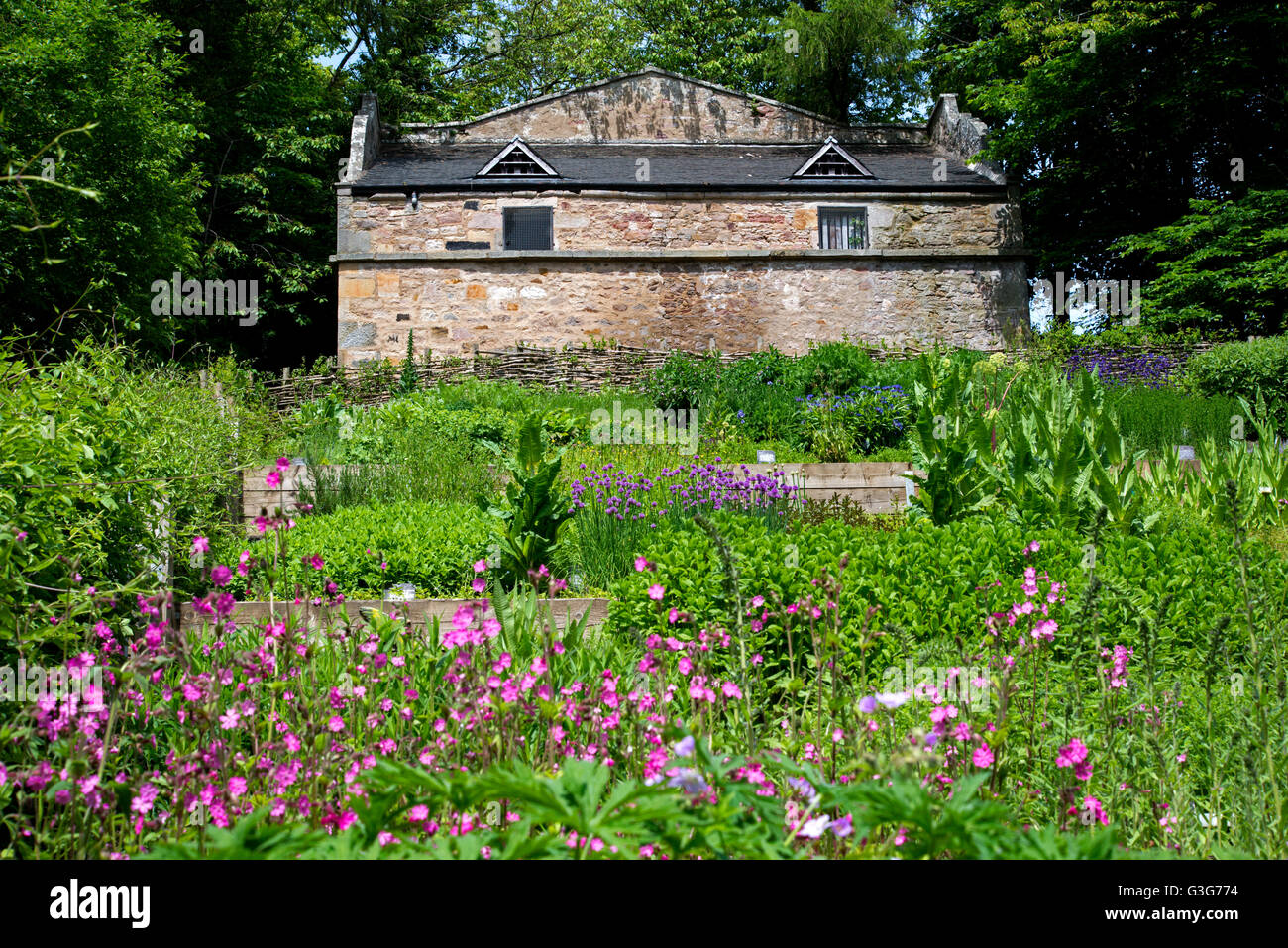 The Doocot and  Walled Garden in the grounds of the Hermitage of Braid in Edinburgh. - Stock Image