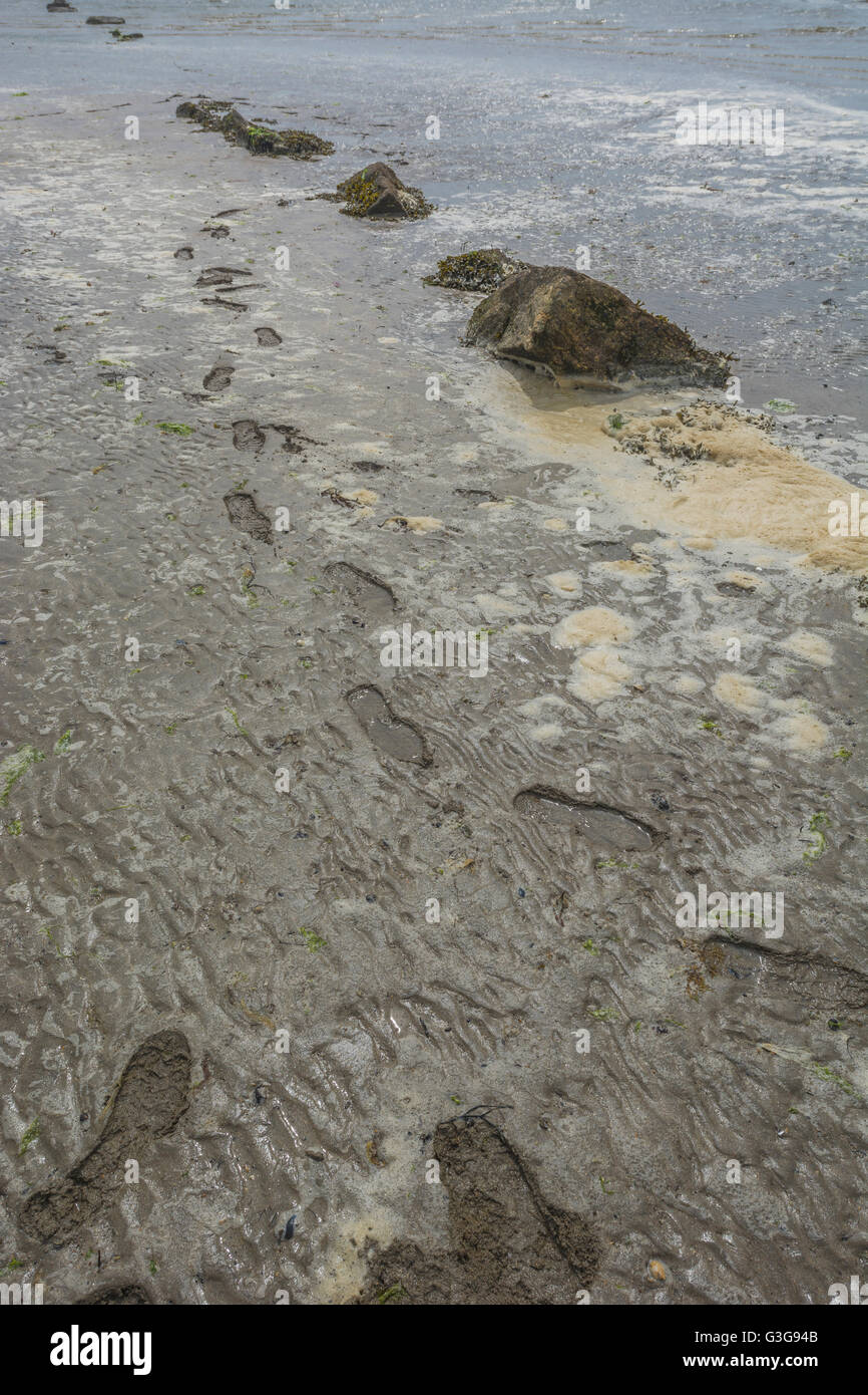 Polluted UK beach with dirty sea foam and footprints in sand - metaphor for environmental pollution, polluted water, - Stock Image
