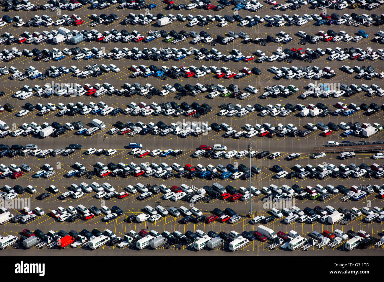 Aerial view, Port of Duisburg company Logport with cars parking at the Rhine, herringbone, Duisburg, Ruhr region, - Stock Image