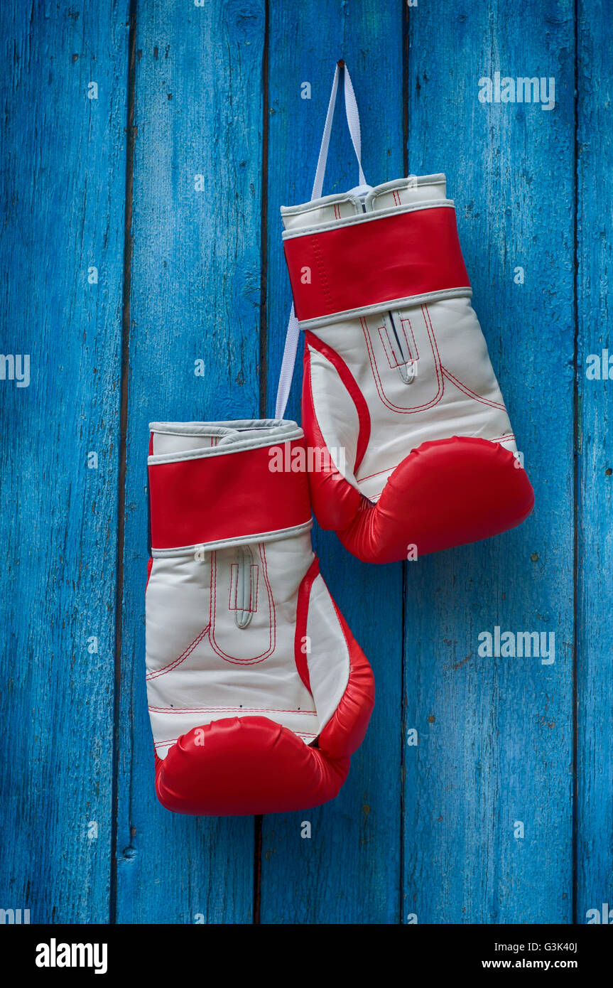 red boxing gloves hanging on the old blue cracked wooden background - Stock Image