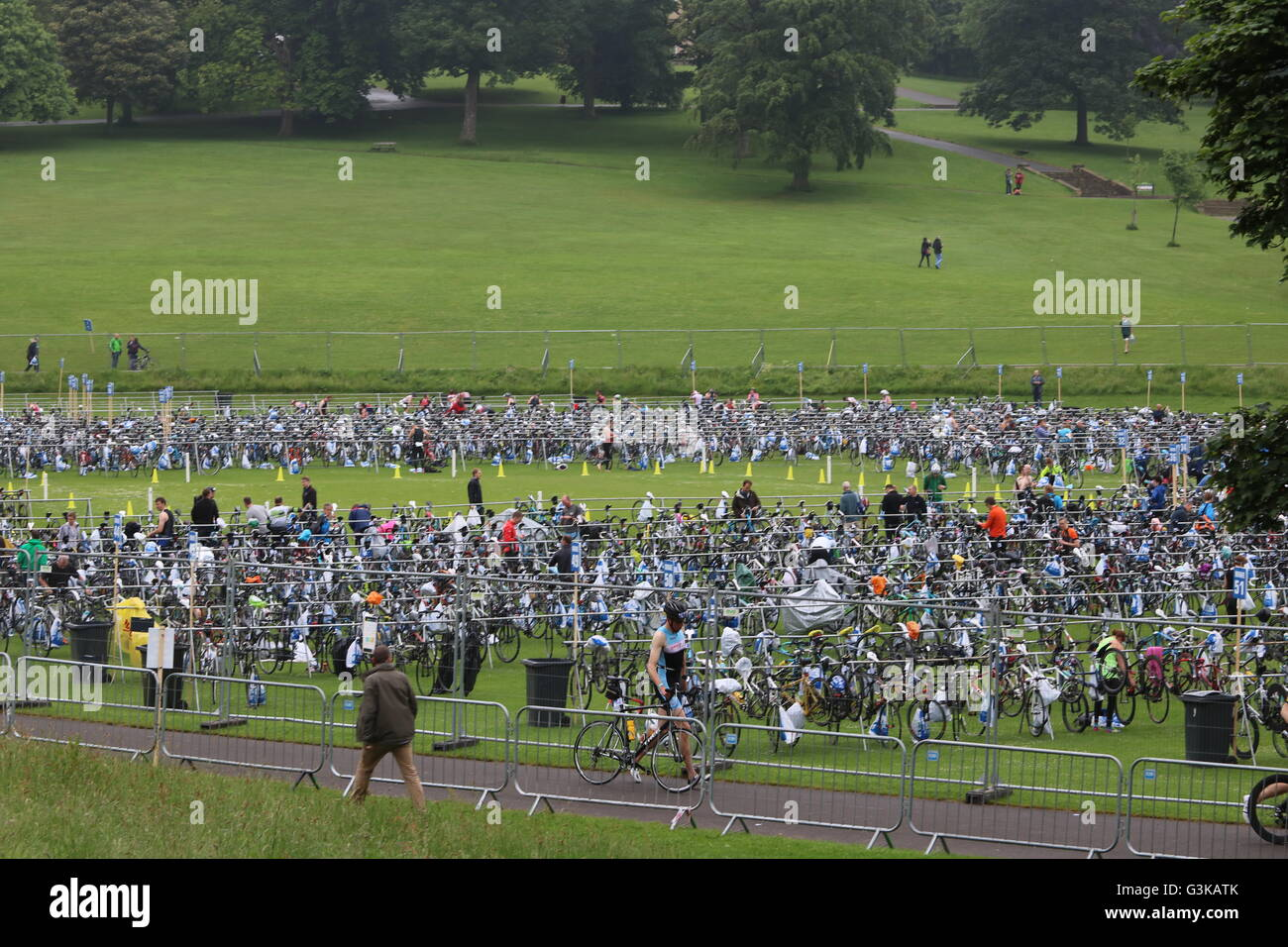 Bikes racked up in Roundhay Park before the open race category at World Series Triathlon in Leeds. Stock Photo