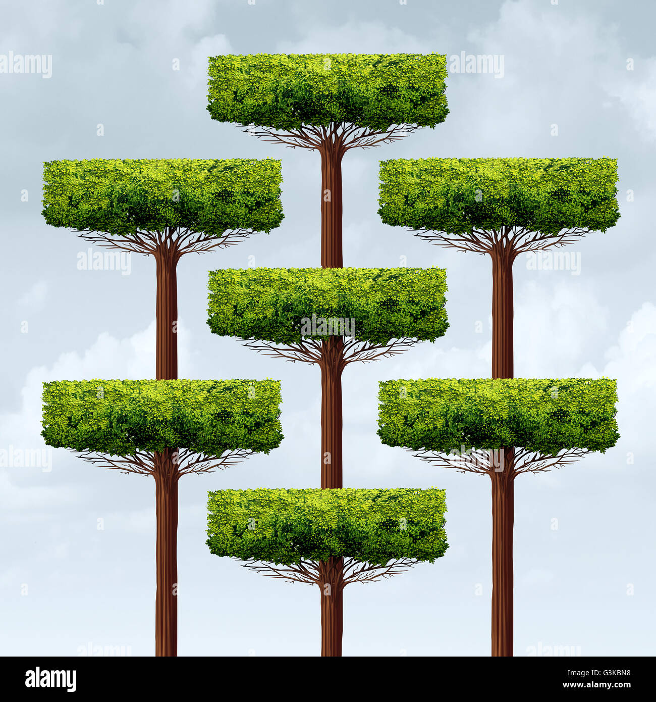 Organization structure growth as a group of organized growing trees in a business structure as a financial corporate - Stock Image