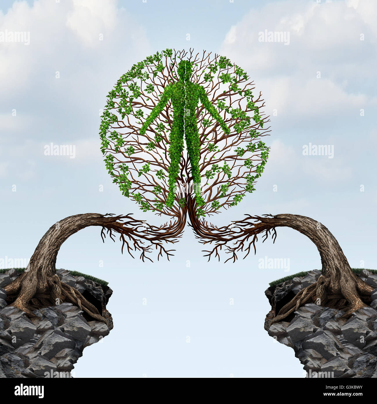 Global unity and international partnership concept as two trees from two distant cliffs joining together to form. - Stock Image