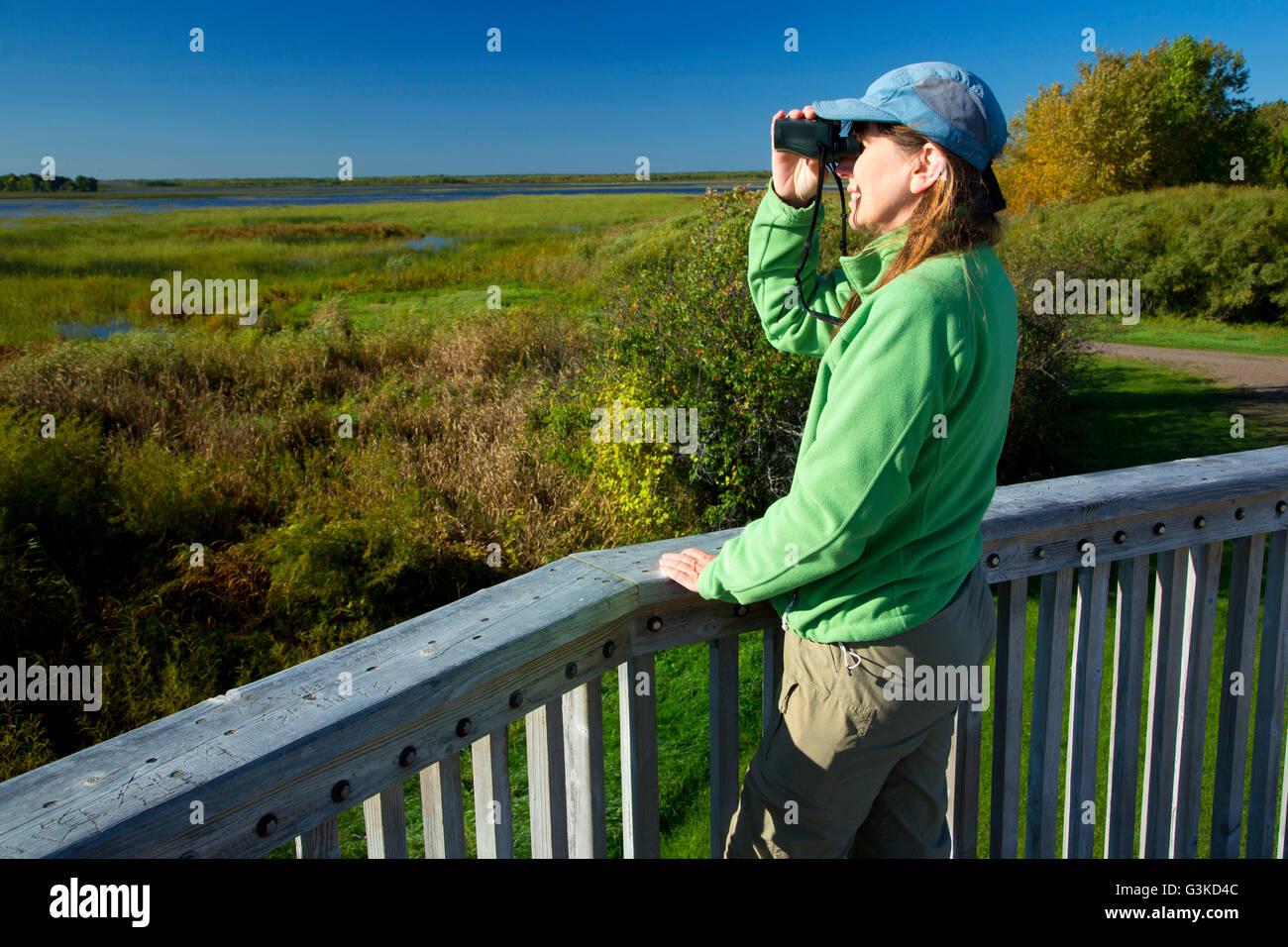 ee7c8c74d73 Rice Lake Observation Tower