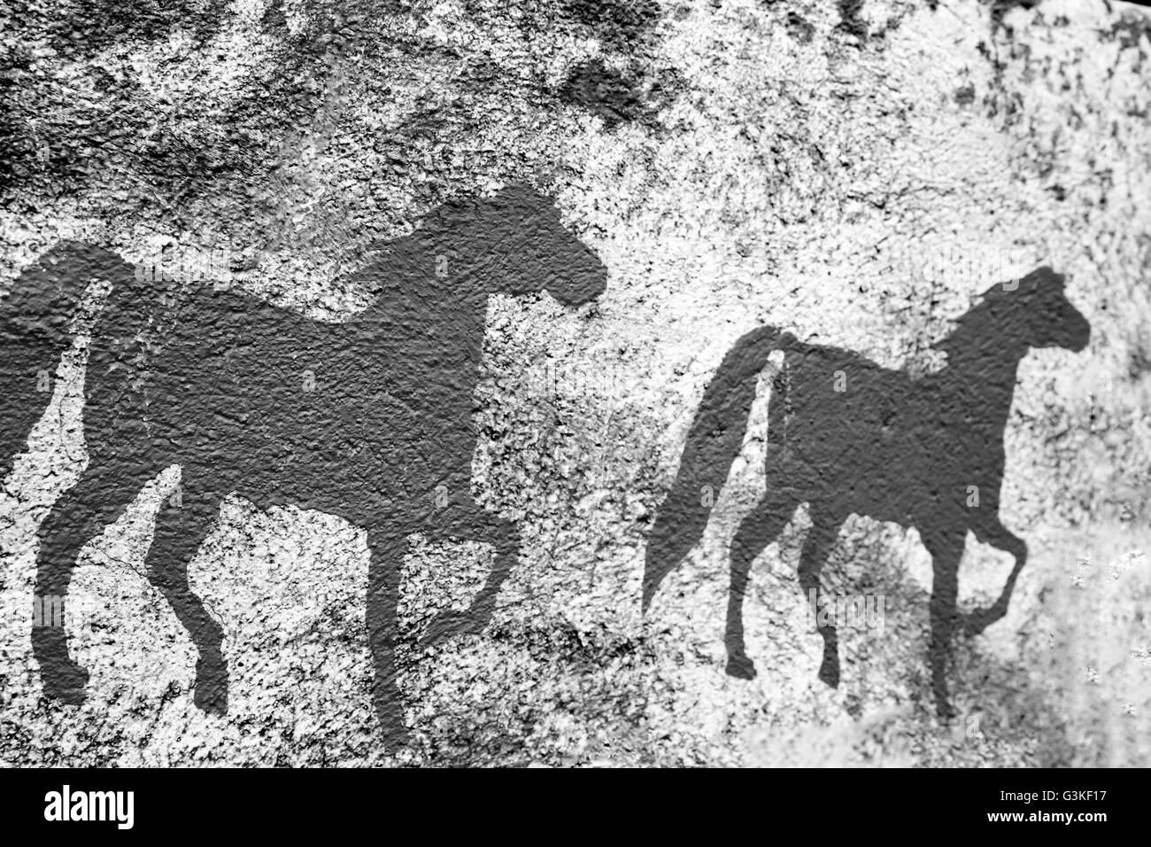 Texture or backgrounds of painted Horse on the cemented wall. - Stock Image