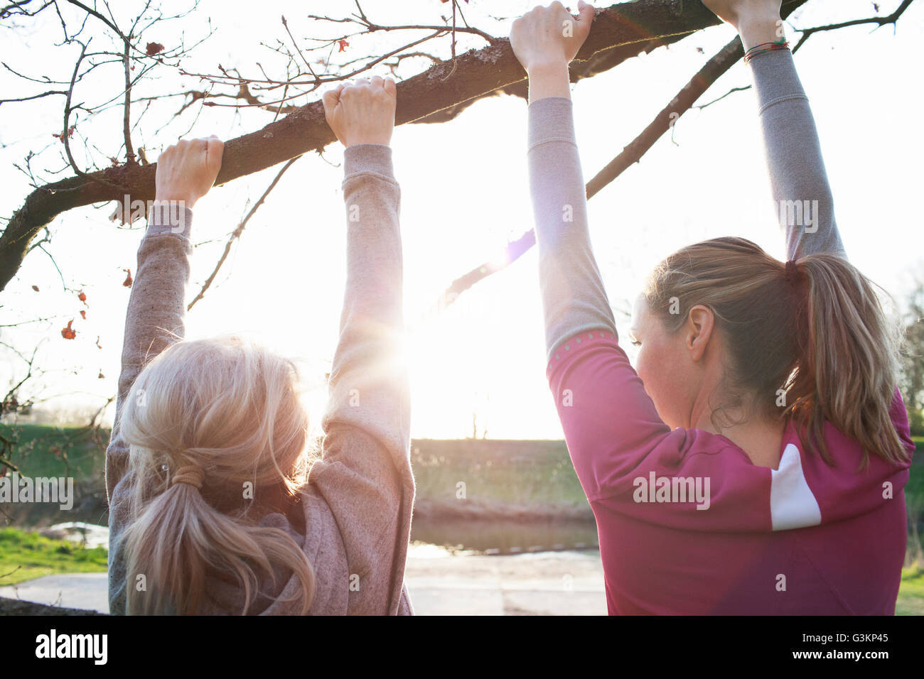 Rear view of women doing chin ups on tree branch - Stock Image