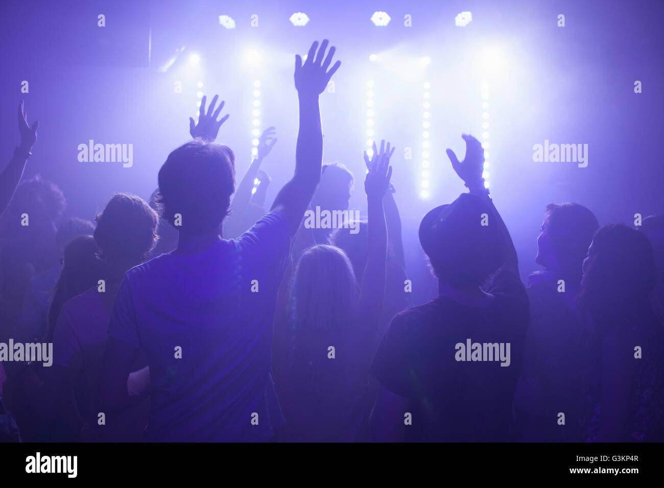 Rear view of group in club arms raised watching concert - Stock Image