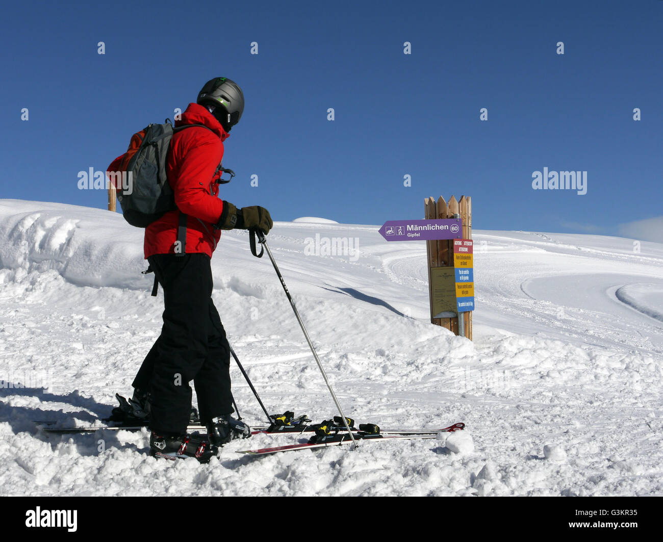 Putting on their skis to descend from the Mannlichen to Grindlewald - Stock Image