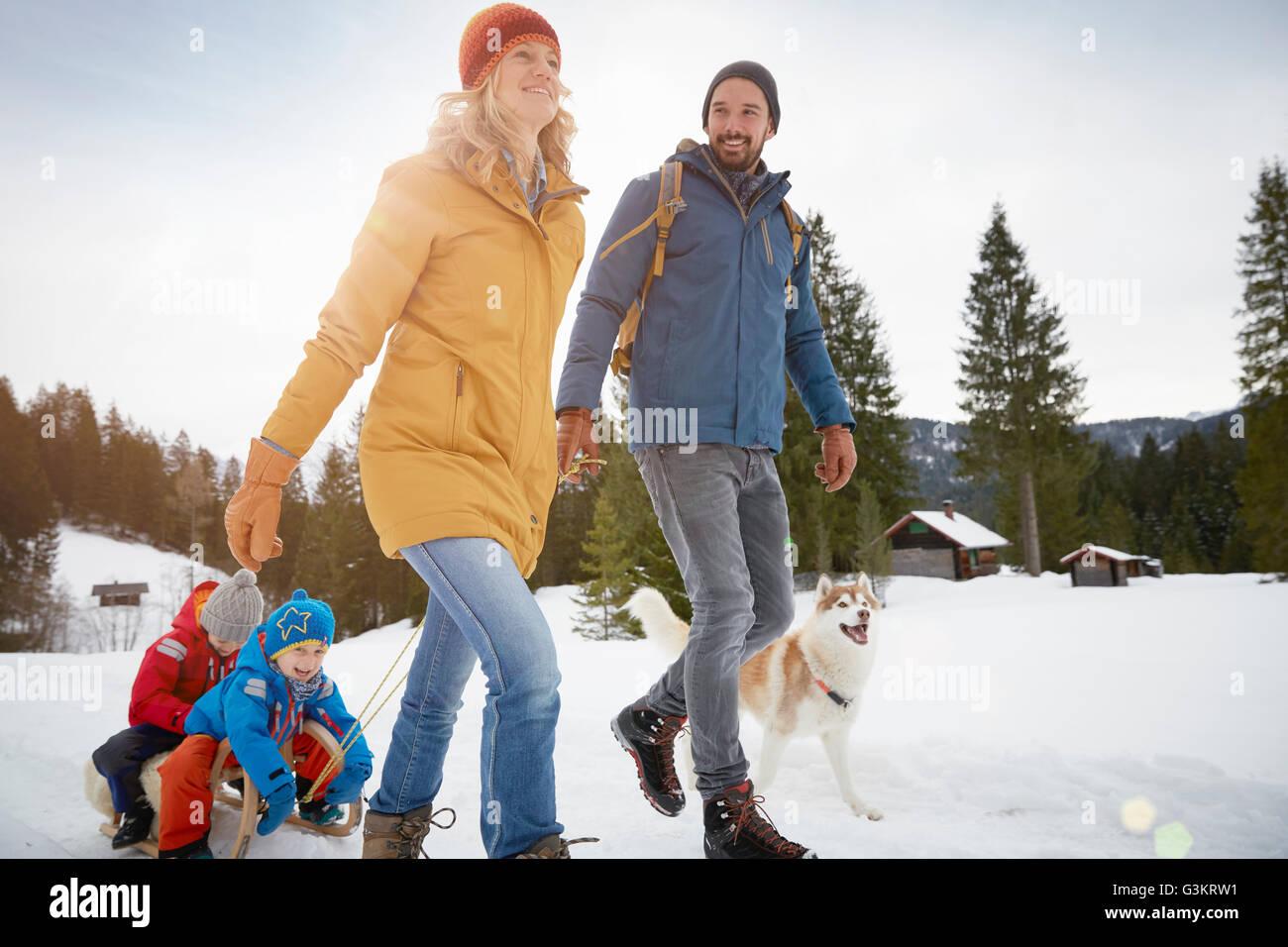 Parents pulling sons on toboggan in winter landscape, Elmau, Bavaria, Germany - Stock Image