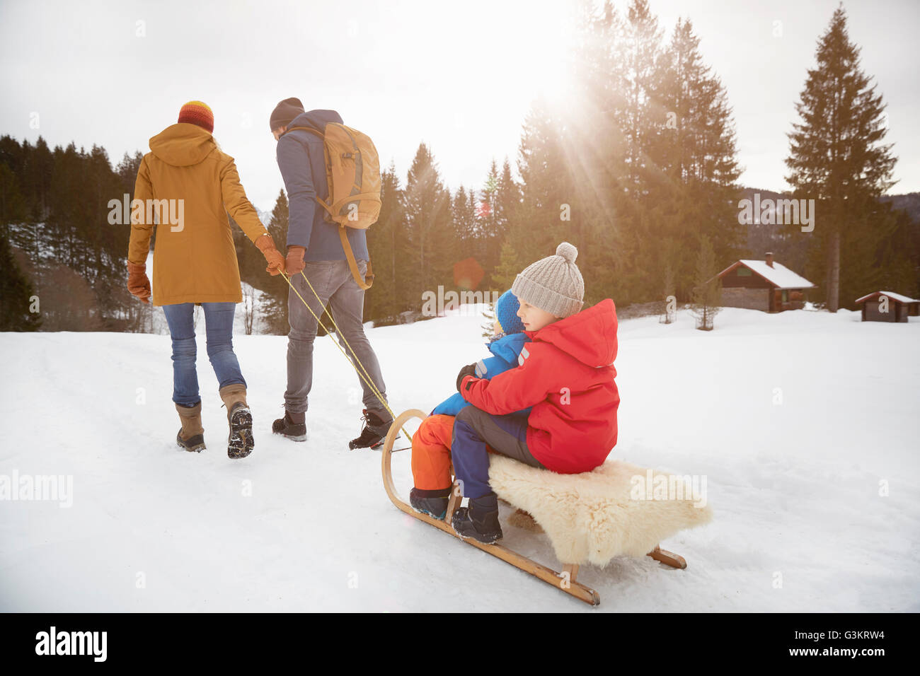 Rear view of parents pulling sons on toboggan in snow landscape, Elmau, Bavaria, Germany - Stock Image