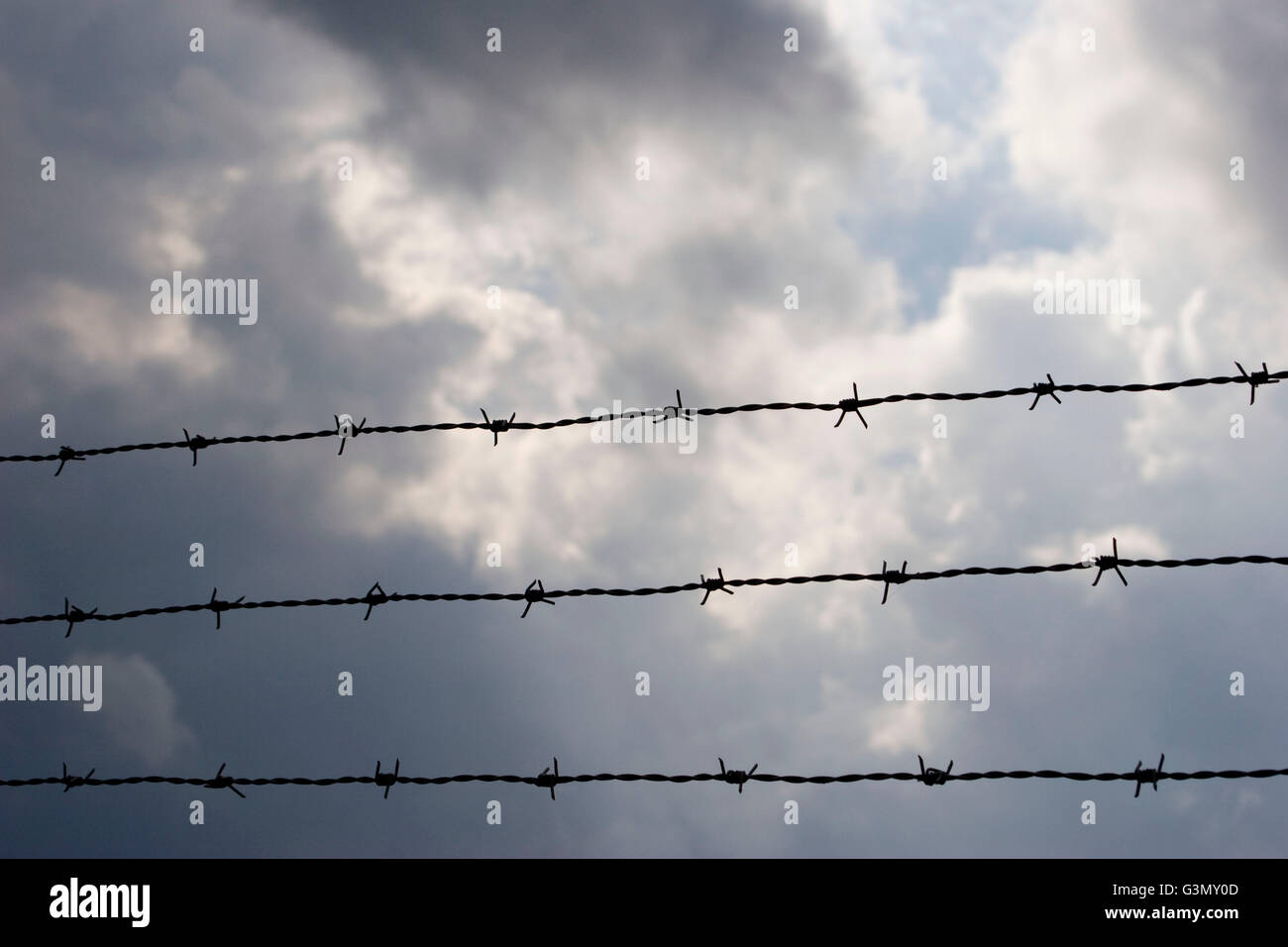 Barbed wire and storm clouds - Stock Image