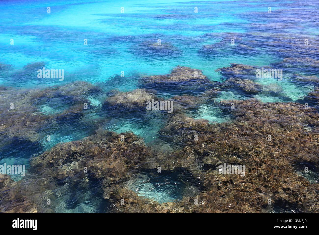 Coral reef in clear ocean water, Christmas Island, Kiribati Stock Photo