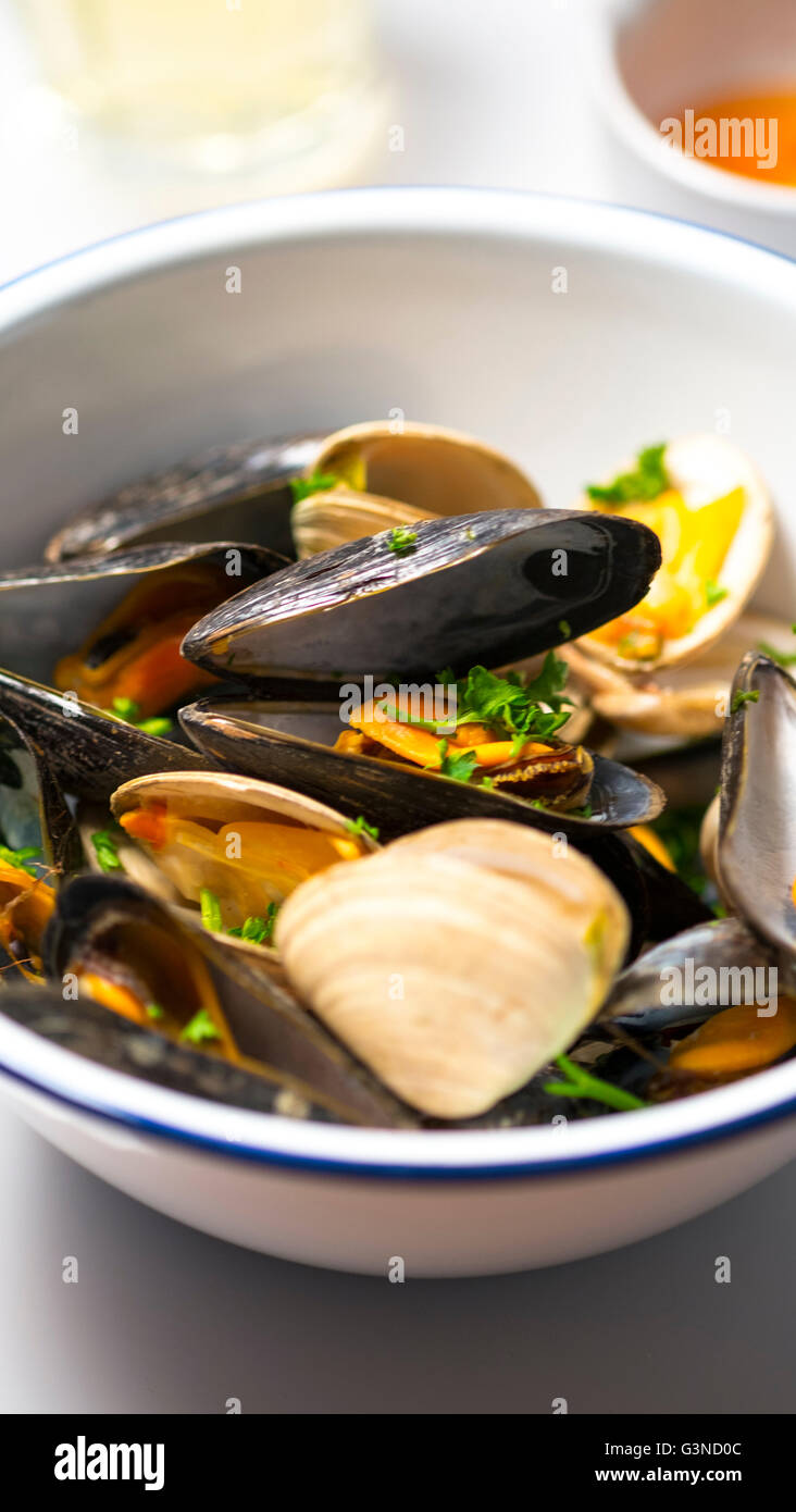 Mussels and Clams - Stock Image