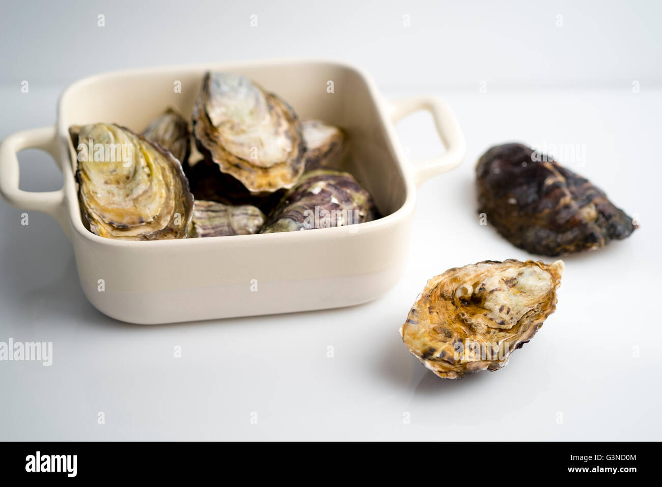 Pacific or Gigas oysters Stock Photo