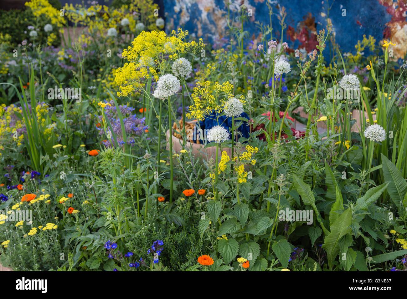 Show gardens at RHS Chelsea Flower show 2016: AkzoNobel Honeysuckle Blue(s) garden Claudy Jongstra, Stefan Jaspers, Stock Photo