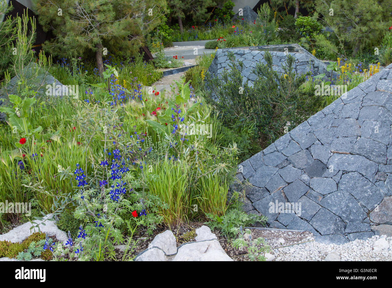Show gardens at RHS Chelsea Flower show 2016.  Royal Bank of Canada Garden designed by Hugo Bugg Stock Photo