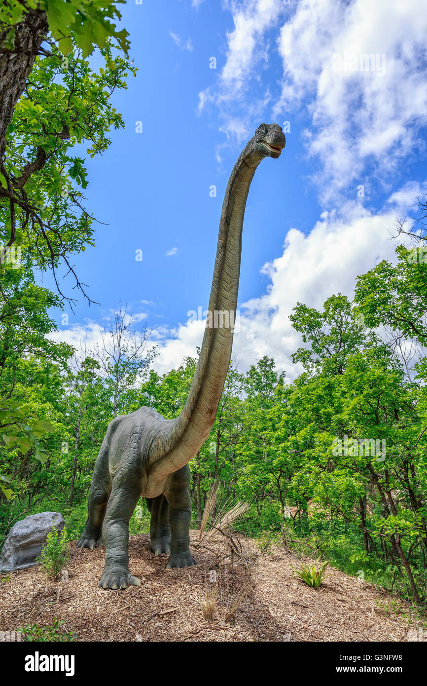 Omeisaurus at Dinosaurs Alive, Assiniboine Park Zoo, Winnipeg, Manitoba, Canada. - Stock Image