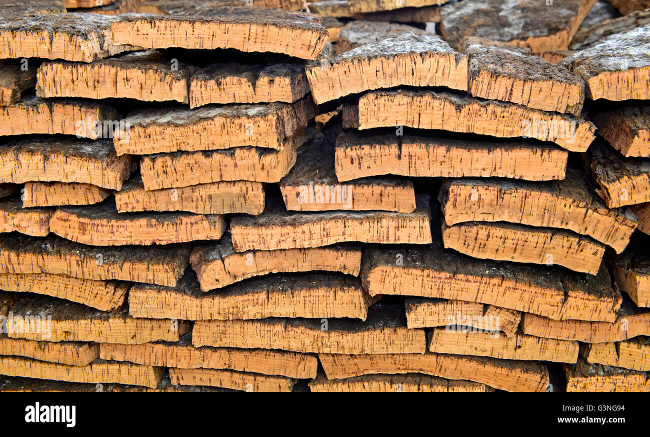 Processed bark of the cork oak (Quercus suber) - Stock Image