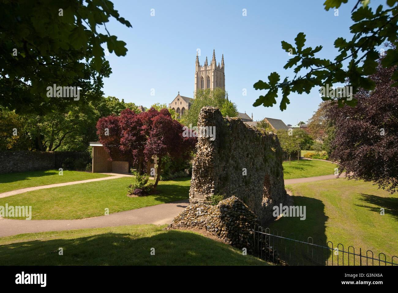 St Edmundsbury Cathedral Bury St Edmunds Suffolk England - Stock Image