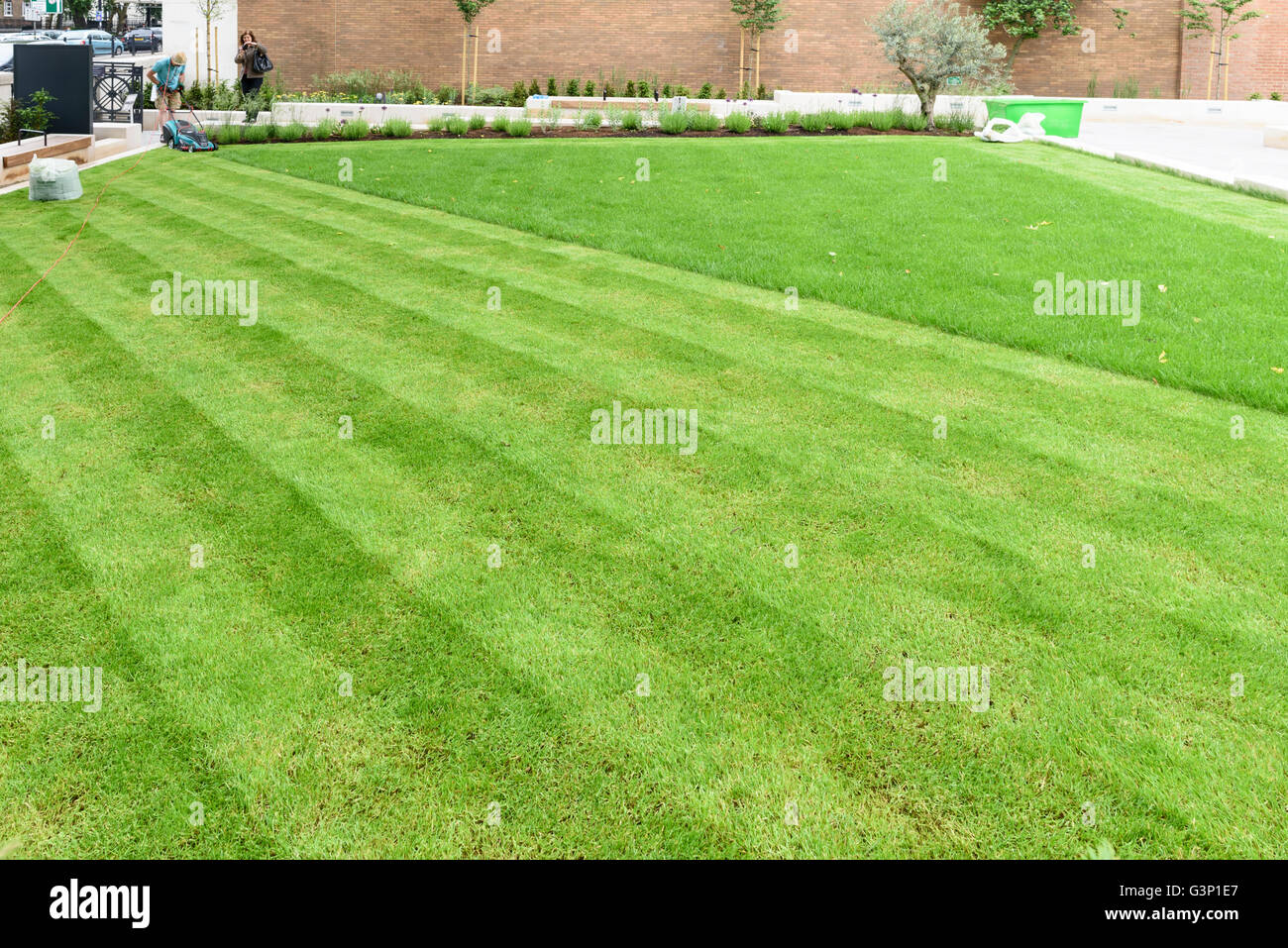Man mowing lawn, London. - Stock Image