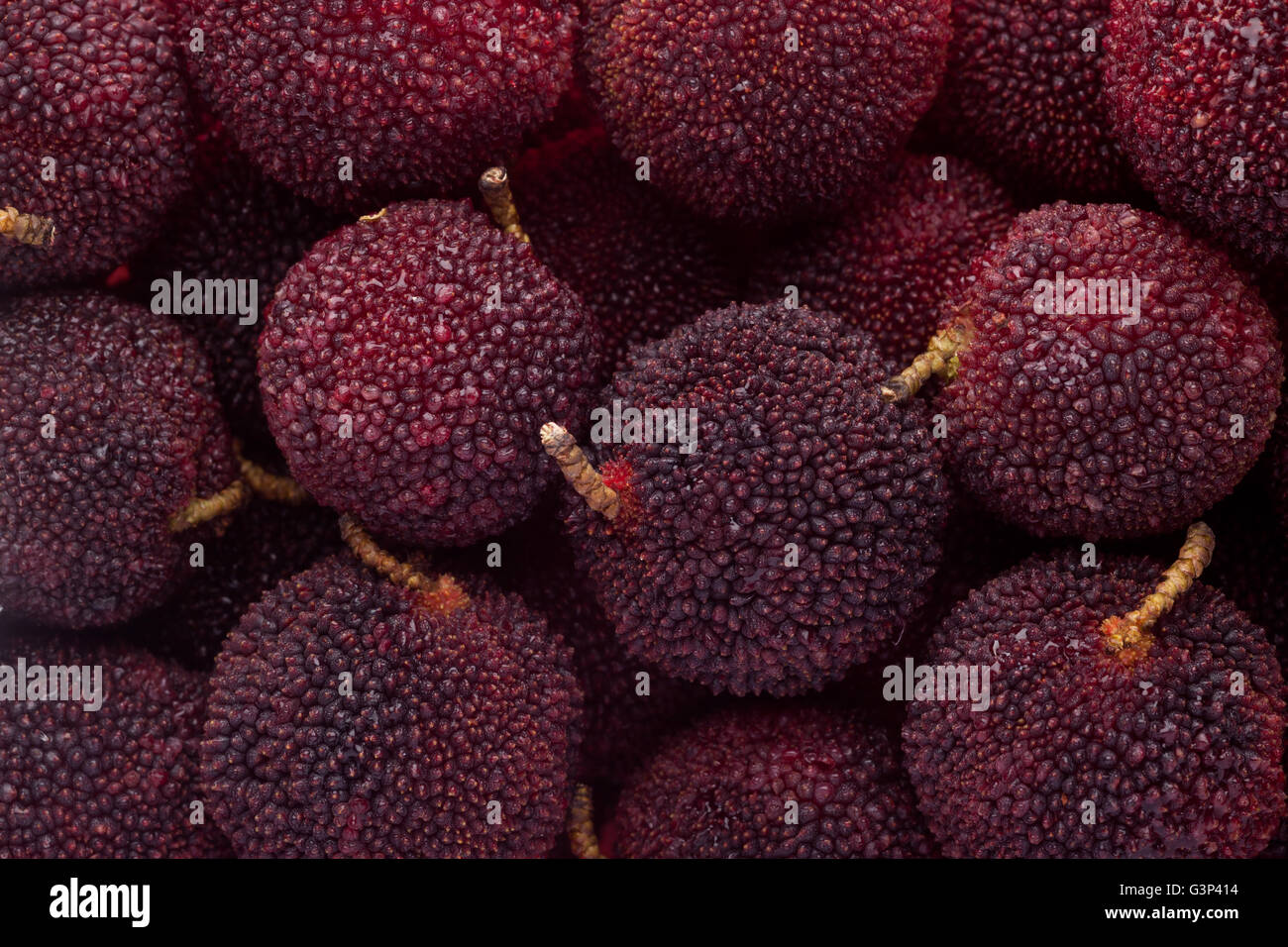 Yumberries in a square bowl isolated on white background - Stock Image