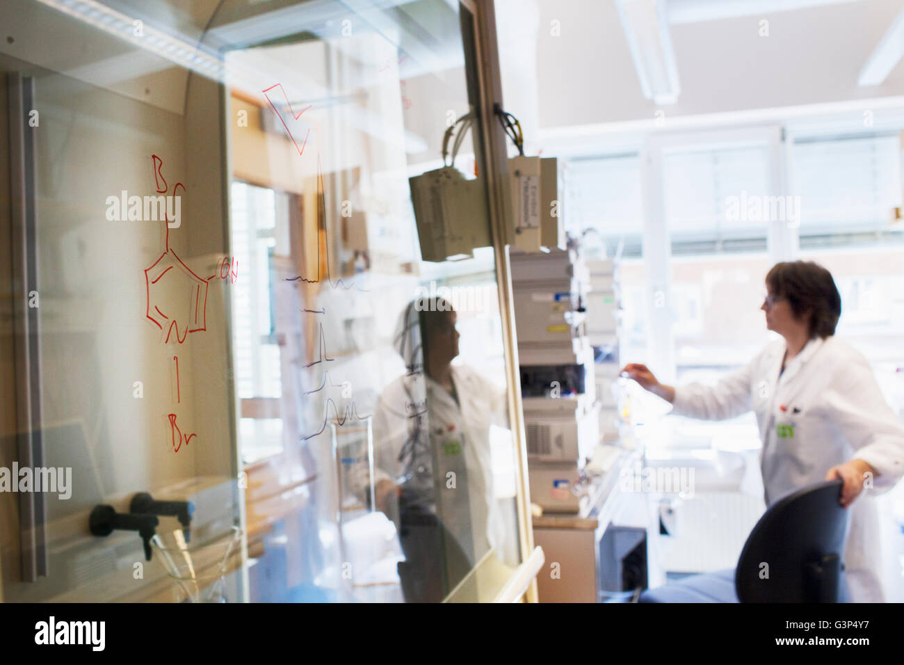 Sweden, Senior woman scientist working in lab - Stock Image
