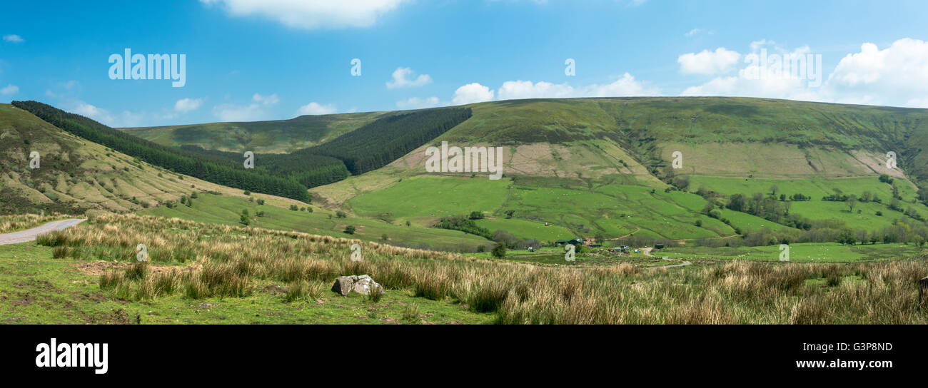 Panoramic view of a farmstead in a valley with a conifer plantation. - Stock Image