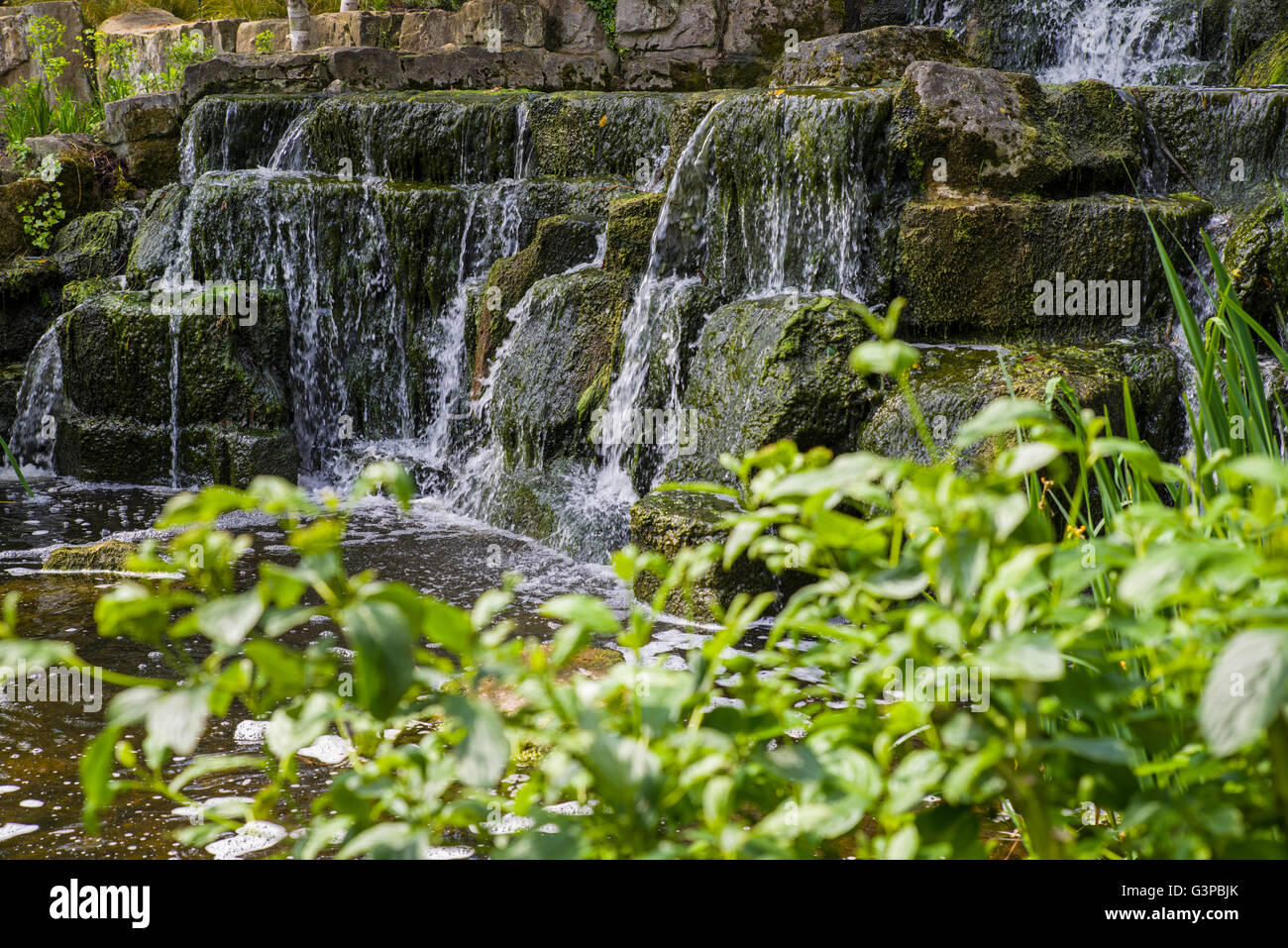 A View Of The Waterfall In The Japanese Garden Island In Regents Park,  London.